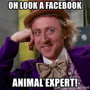 Willy Wonka - Oh look a Facebook  Animal Expert!