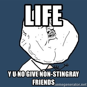 Y U No - LIFE Y U no give non-stingray friends