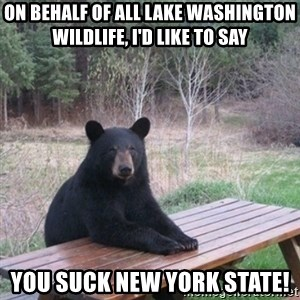 Patient Bear - On behalf of all Lake Washington Wildlife, I'd like to say  You suck New York State!