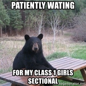 Patient Bear - Patiently wating for my Class 1 girls sectional