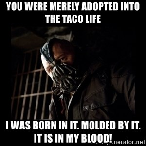 Bane Meme - You were merely adopted into the taco life I was born in it. Molded by it. It is in my blood!