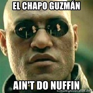 What If I Told You - El Chapo Guzmán Ain't do nuffin