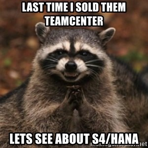 evil raccoon - Last time I sold them teamcenter lets see about s4/hana
