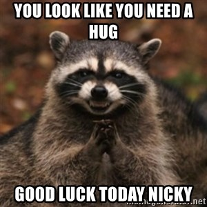 evil raccoon - You look like you need a hug Good luck today Nicky
