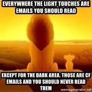 The Lion King - Everywhere the light touches are emails you should read Except for the dark area. Those are CF emails and you should never read them