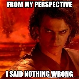 Anakin Skywalker - FROM MY PERSPECTIVE I SAID NOTHING WRONG