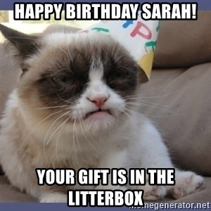 Birthday Grumpy Cat - Happy birthday sarah! Your gift is in the litterbox