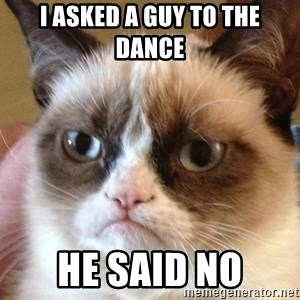 Angry Cat Meme - I asked a guy to the dance he said no