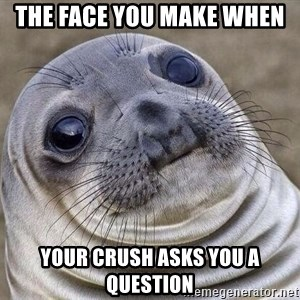 Awkward Seal - The face you make when  your crush asks you a question