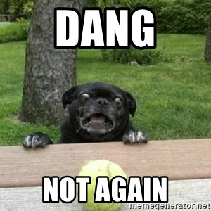 Ermahgerd Pug - dang  not again