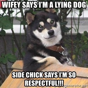 Cool Dog - Wifey says I'm a lying Dog Side chick says I'm so respectful!!!