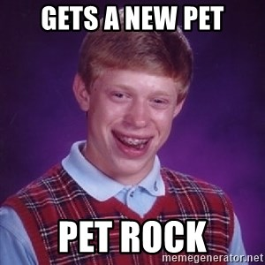 Bad Luck Brian - Gets a new pet Pet rock