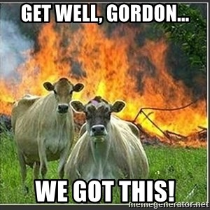 Evil Cows - Get well, Gordon... We got this!