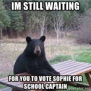 Patient Bear - im still waiting for you to vote sophie for school captain