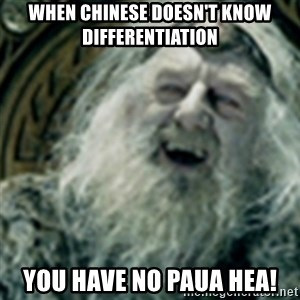 you have no power here - When Chinese doesn't know differentiation You have no paua hea!