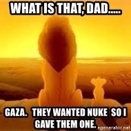 The Lion King - What is that, dad..... Gaza.   They wanted nuke  so I gave them one.
