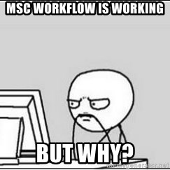 computer guy - MSC workflow is working but why?