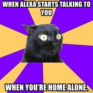 Anxiety Cat - When Alexa starts talking to you When you're home alone.