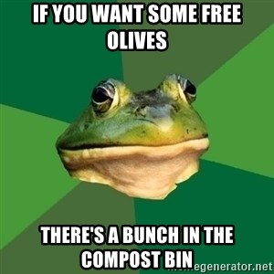 Foul Bachelor Frog - if you want some free olives There's a bunch in the compost bin