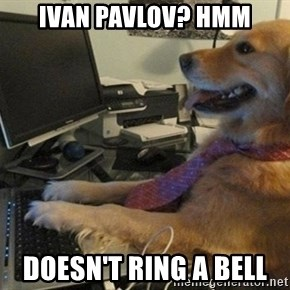 I have no idea what I'm doing - Dog with Tie - Ivan Pavlov? Hmm Doesn't ring a bell