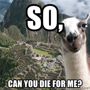 Bossy the Llama - so, can you die for me?