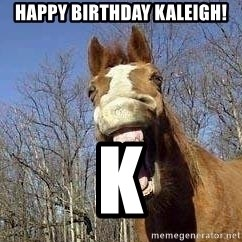 Horse - HAPPY BIRTHDAY KALEIGH! K