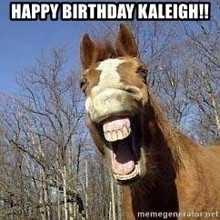 Horse - Happy Birthday Kaleigh!!