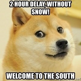 Dogeeeee - 2 hour delay, without snow! Welcome to the South