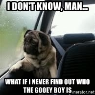 introspective pug - I don't know, man... what if I never find out who the gooey boy is