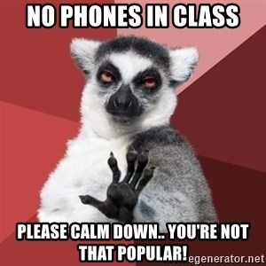 Chill Out Lemur - NO PHONES IN CLASS Please calm down.. You're not THAT popular!