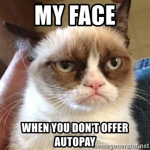 Grumpy Cat 2 - My face when you don't offer autopay