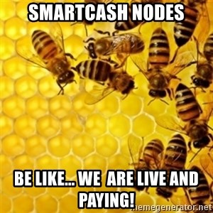 Honeybees - SmartCash Nodes Be like... We  are live and paying!