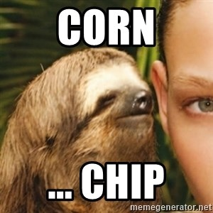 Whispering sloth - Corn ... chip