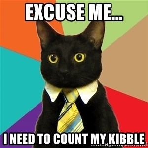 Business Cat - Excuse me... i need to count my kibble