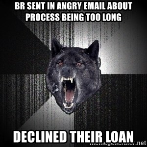 flniuydl - br sent in angry email about process being too long declined their loan