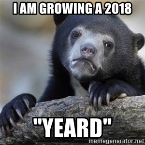 "Confession Bear - I am growing a 2018 ""Yeard"""