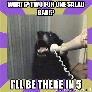 Yes, this is dog! - What!? Two for One salad bar!? I'll be there in 5