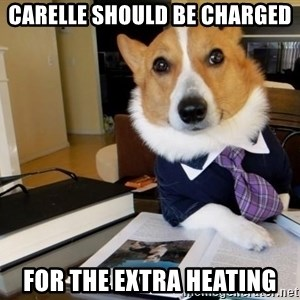 Dog Lawyer - Carelle should be charged For the extra heating