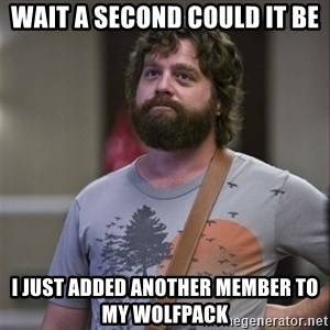 Alan Hangover - wait a second could it be I just added another member to my wolfpack