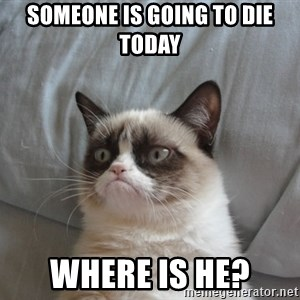 Grumpy cat 5 - someone is going to die today where is he?