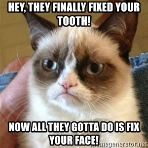 Grumpy Cat  - Hey, they finally fixed your tooth! Now all they gotta do is fix your face!