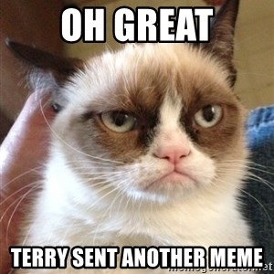 Grumpy Cat 2 - Oh great Terry sent another meme