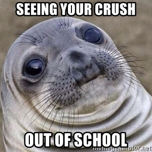 Awkward Seal - seeing your crush  out of school