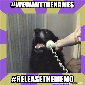Yes, this is dog! - #WeWantTheNames #ReleaseTheMemo