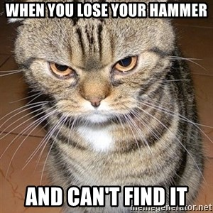 angry cat 2 - When you lose your hammer and can't find it