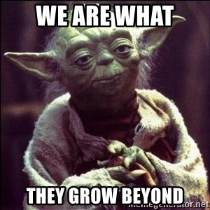 Advice Yoda - We are what  they grow beyond