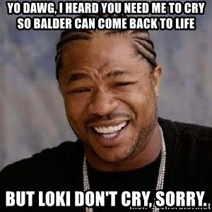Yo Dawg - Yo dawg, I heard you need me to cry so Balder can come back to life But Loki don't cry, sorry.