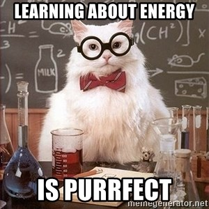 Science Cat - Learning about energy is Purrfect