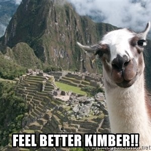 Bossy the Llama - Feel Better Kimber!!