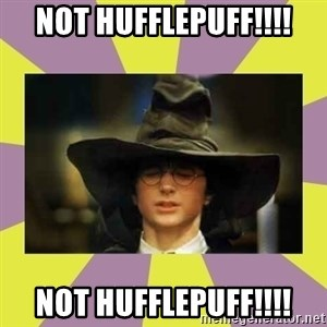 Harry Potter Sorting Hat - Not Hufflepuff!!!! Not Hufflepuff!!!!